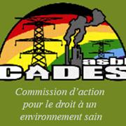Commission d'action pour le droit à un environnement sain